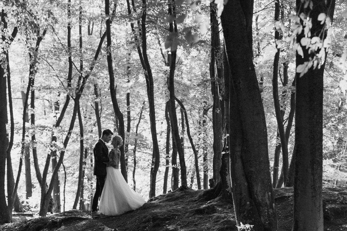 sesja ślubna koło Gdańska